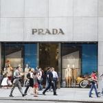Hispanic Consumer Shopping Behavior Insights