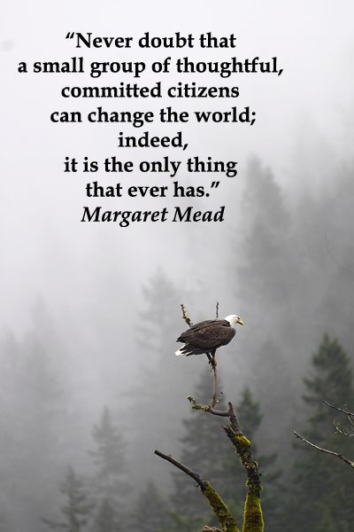 Never doubt that a small group of thoughtful, committed citizens can change the world; indeed, it is the only thing that ever has -- Margaret Mead