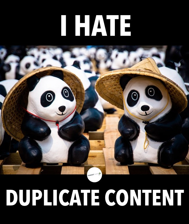 Google Panda and duplicate content. Discover how to deal with duplicate content right now.