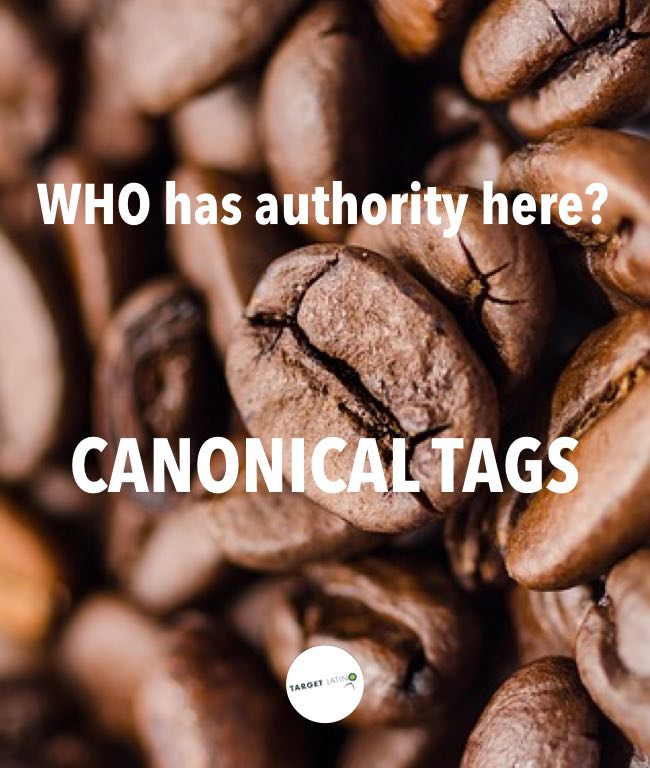 What are canonical url tags? Find out!