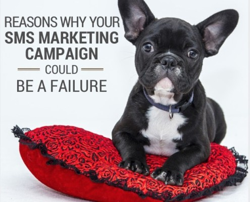 Reasons why your SMS marketing campaign could be a failure